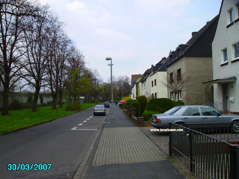 Windthorststr.