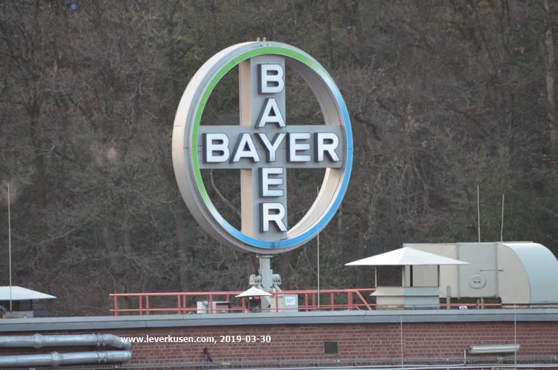 Kreuz Leverkusen Sperrung